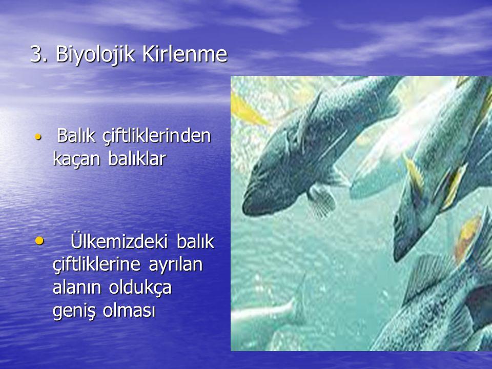 3. Biyolojik Kirlenme Balık çiftliklerinden kaçan balıklar.