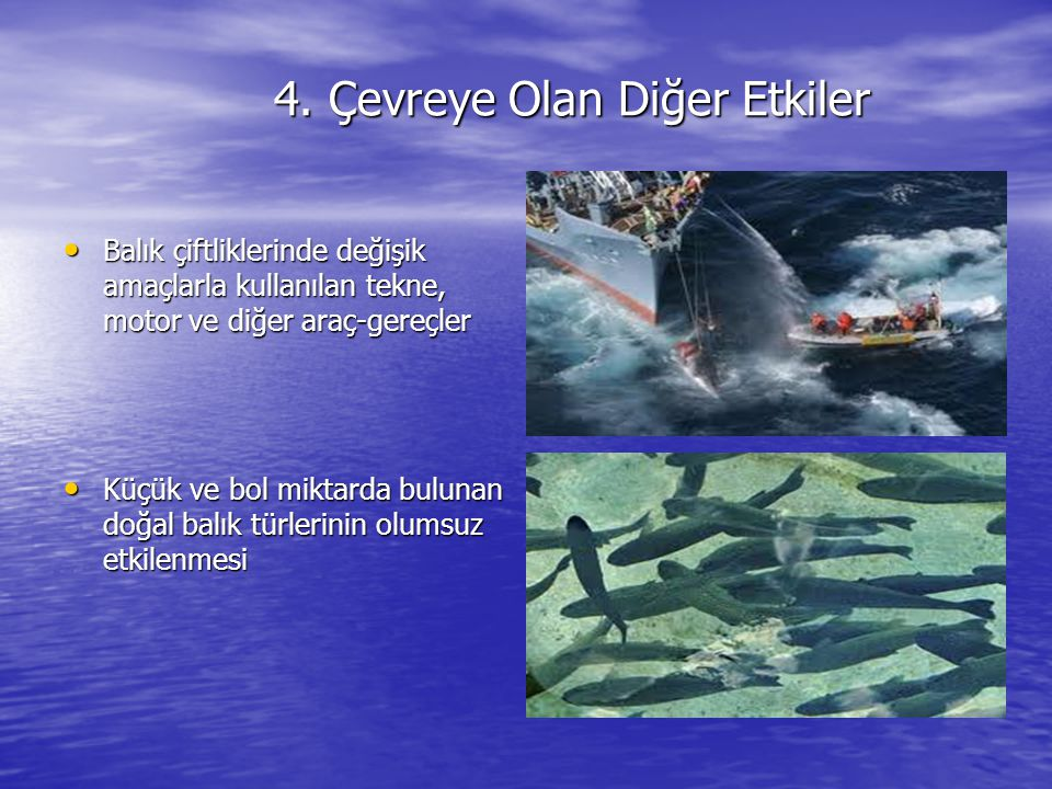 4. Çevreye Olan Diğer Etkiler