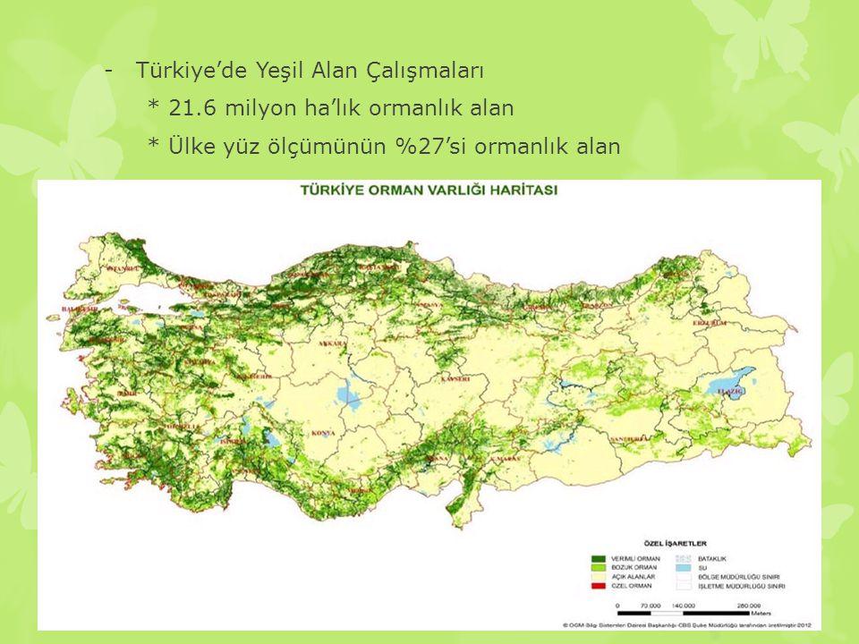 Türkiye'de Yeşil Alan Çalışmaları