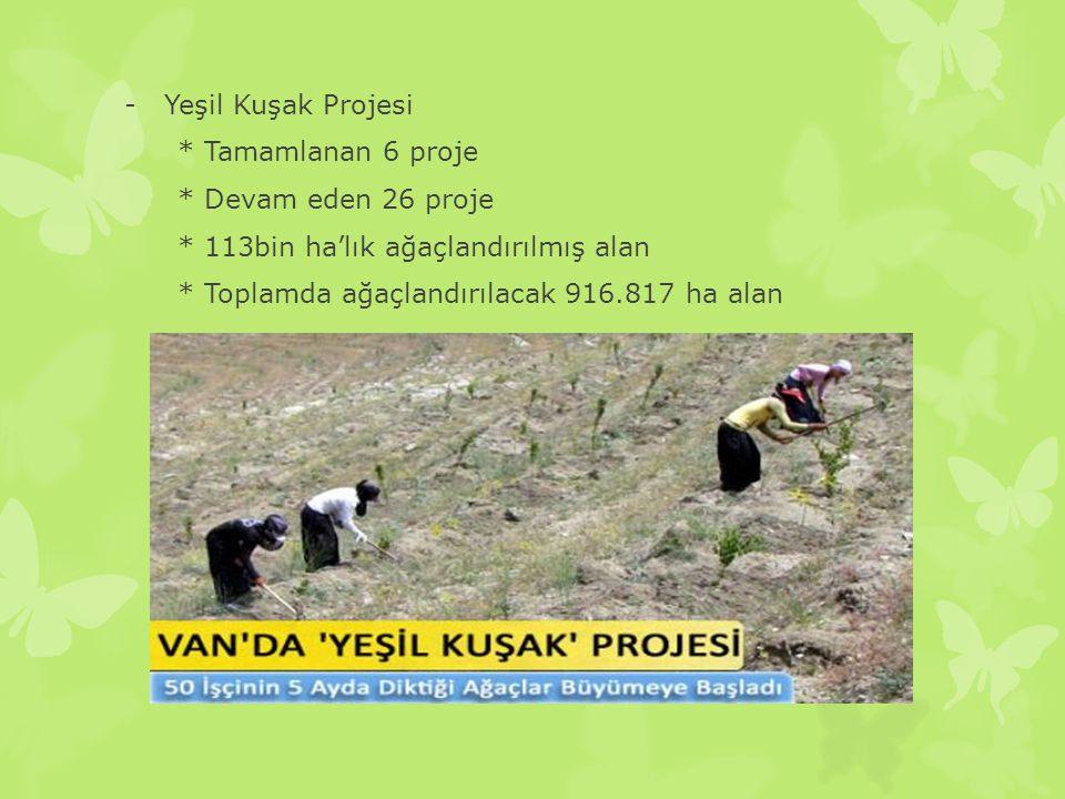 Yeşil Kuşak Projesi * Tamamlanan 6 proje. * Devam eden 26 proje. * 113bin ha'lık ağaçlandırılmış alan.