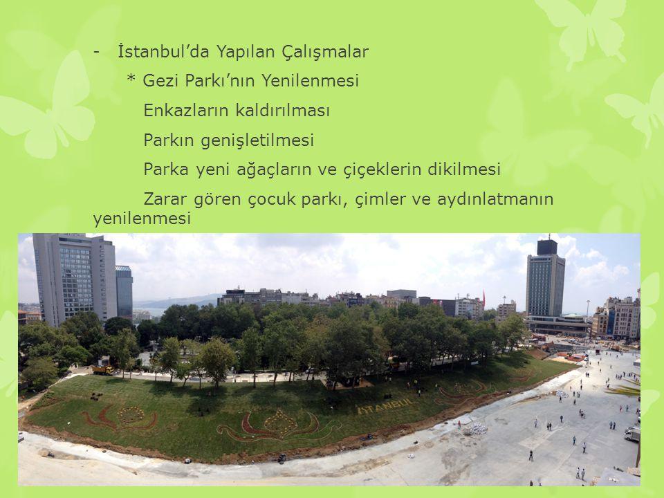 İstanbul'da Yapılan Çalışmalar