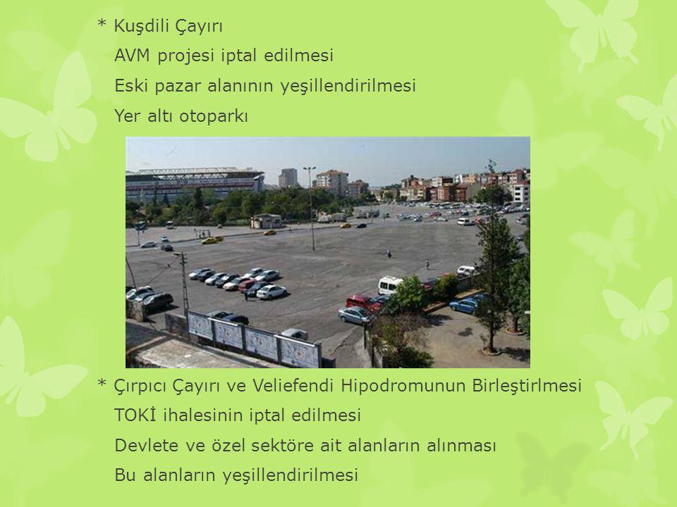 * Kuşdili Çayırı AVM projesi iptal edilmesi Eski pazar alanının yeşillendirilmesi Yer altı otoparkı * Çırpıcı Çayırı ve Veliefendi Hipodromunun Birleştirlmesi TOKİ ihalesinin iptal edilmesi Devlete ve özel sektöre ait alanların alınması Bu alanların yeşillendirilmesi