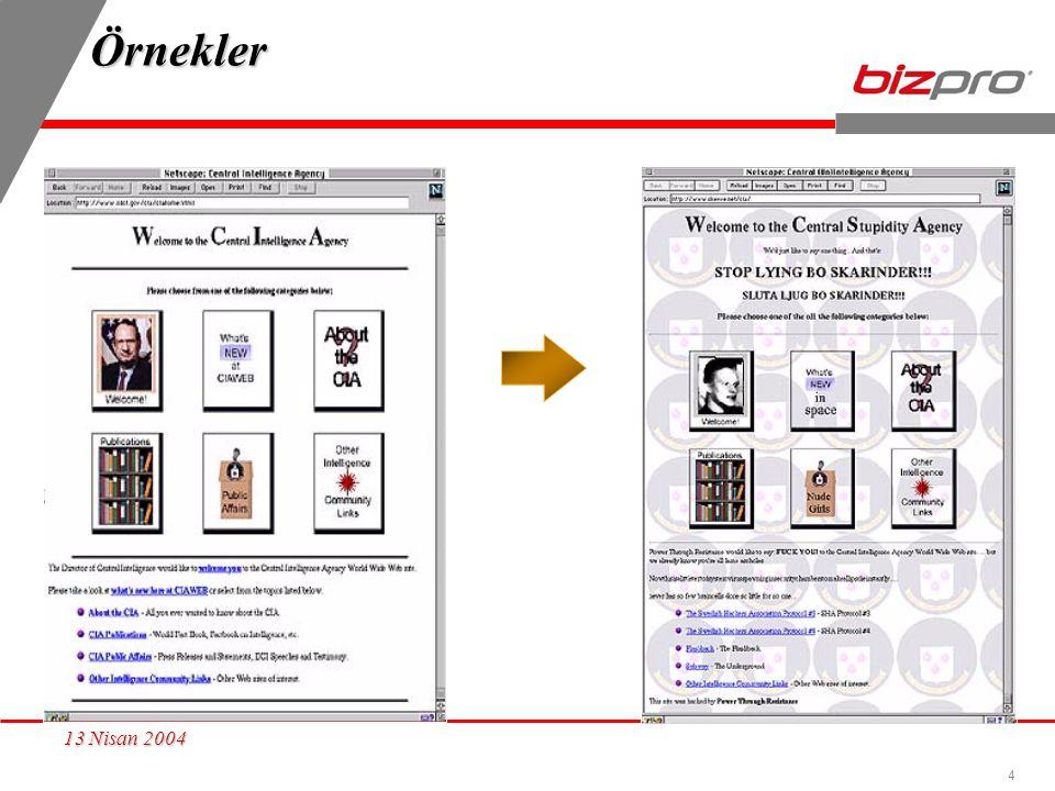 Örnekler 13 Nisan 2004