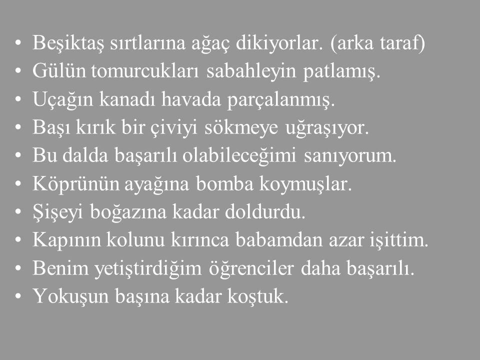 Beşiktaş sırtlarına ağaç dikiyorlar. (arka taraf)