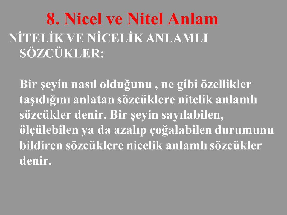 8. Nicel ve Nitel Anlam