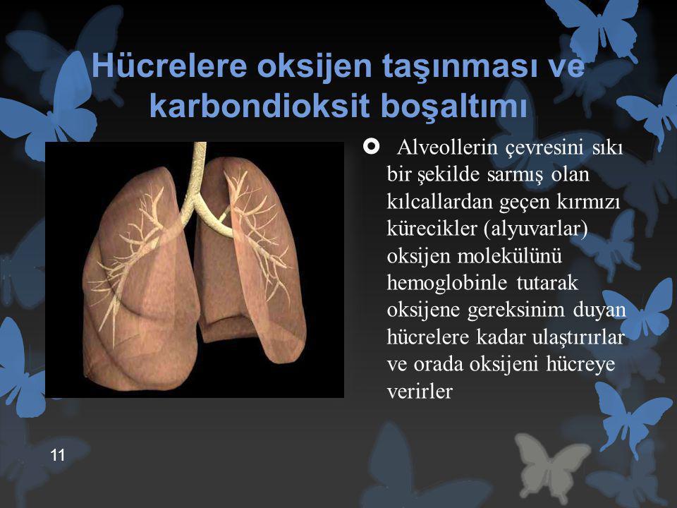 Hücrelere oksijen taşınması ve karbondioksit boşaltımı