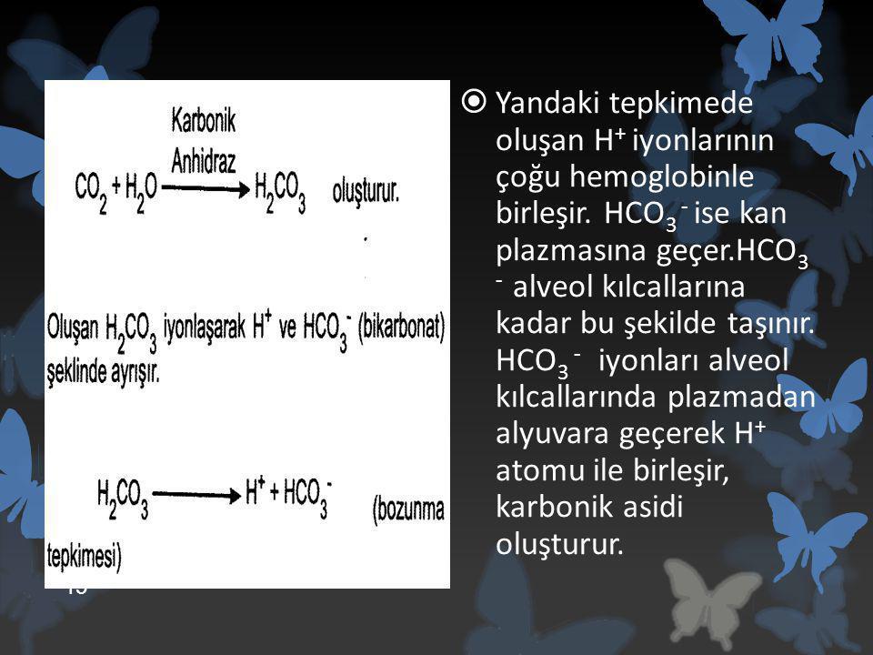 Yandaki tepkimede oluşan H+ iyonlarının çoğu hemoglobinle birleşir