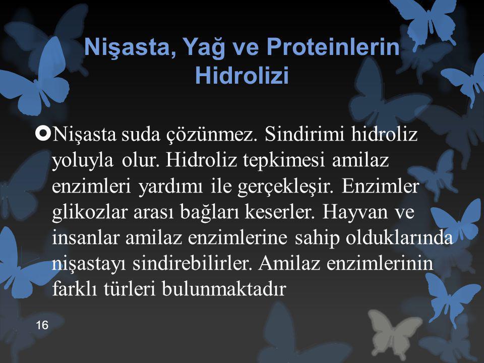 Nişasta, Yağ ve Proteinlerin Hidrolizi