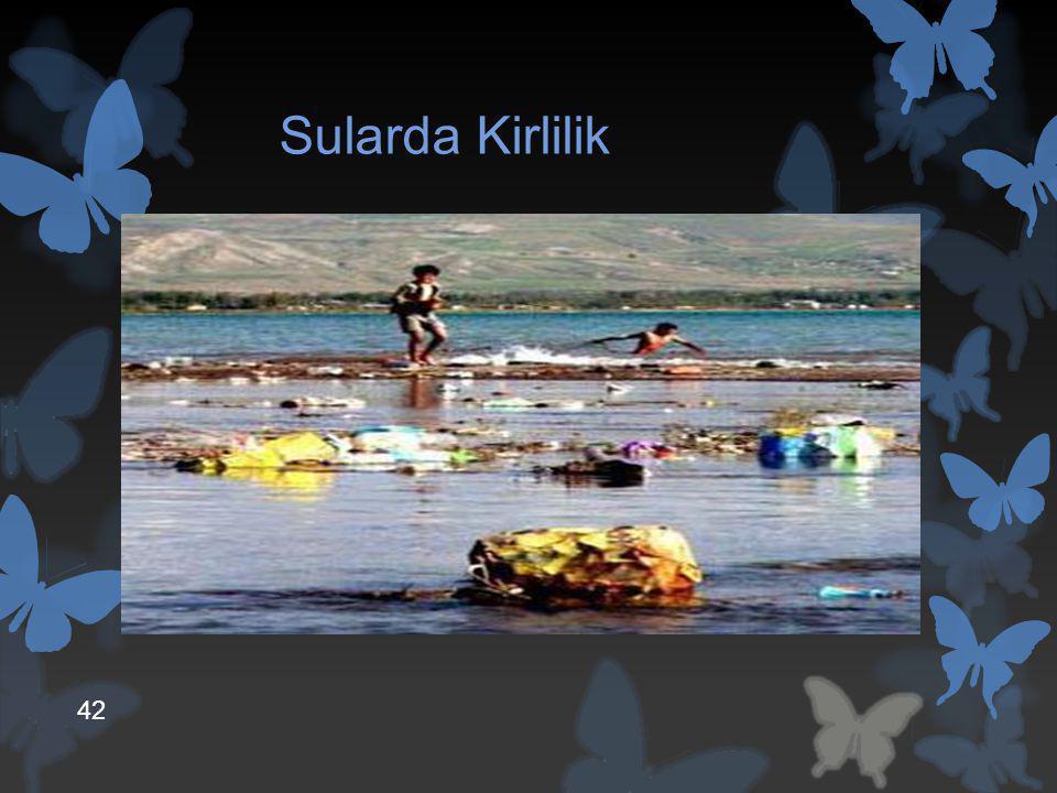 Sularda Kirlilik Su kirliliği, suya karışan maddelerin, suyun fiziksel, kimyasal ve biyolojik özelliklerini değiştirmesidir.