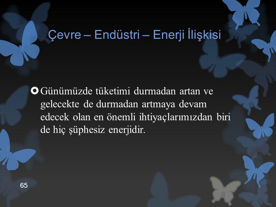 Çevre – Endüstri – Enerji İlişkisi