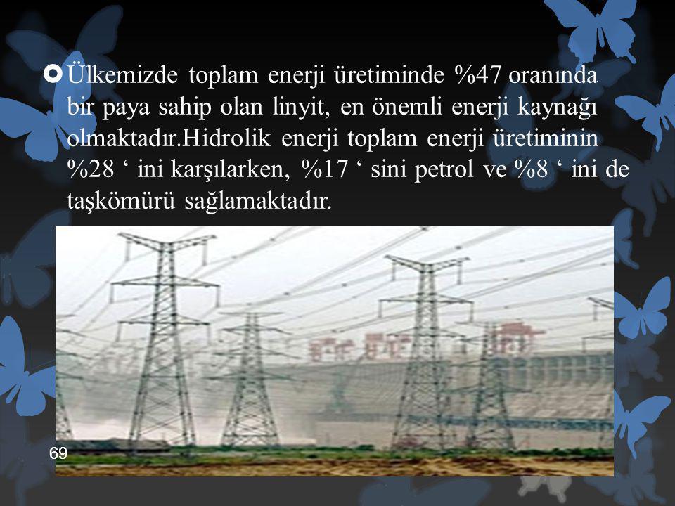 Ülkemizde toplam enerji üretiminde %47 oranında bir paya sahip olan linyit, en önemli enerji kaynağı olmaktadır.Hidrolik enerji toplam enerji üretiminin %28 ' ini karşılarken, %17 ' sini petrol ve %8 ' ini de taşkömürü sağlamaktadır.