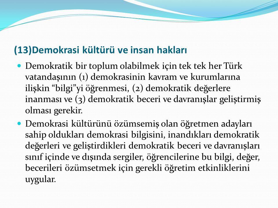 (13)Demokrasi kültürü ve insan hakları