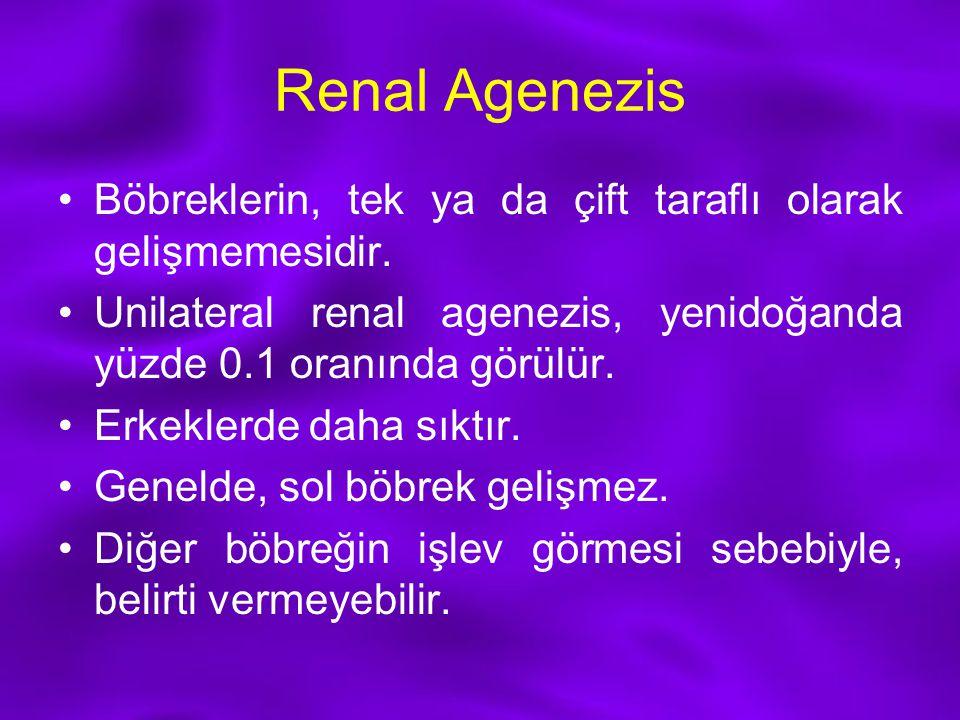 Renal Agenezis Böbreklerin, tek ya da çift taraflı olarak gelişmemesidir. Unilateral renal agenezis, yenidoğanda yüzde 0.1 oranında görülür.