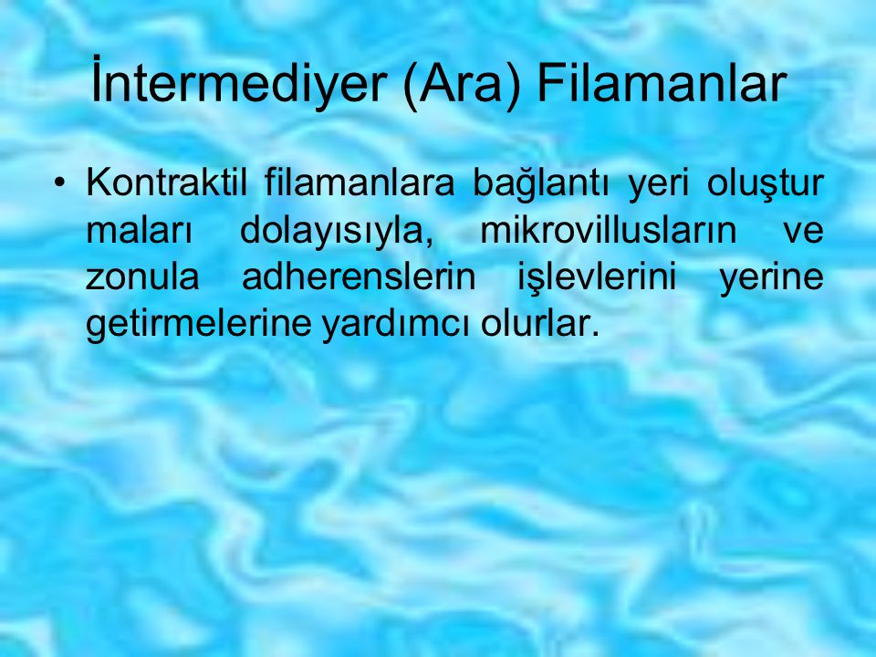 İntermediyer (Ara) Filamanlar