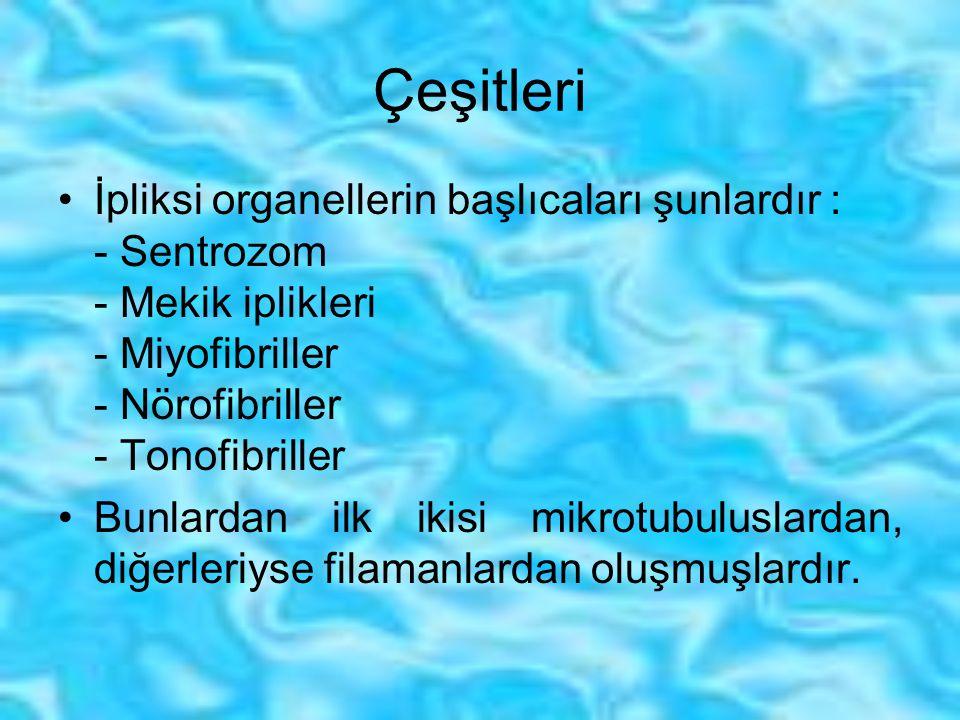 Çeşitleri İpliksi organellerin başlıcaları şunlardır : - Sentrozom - Mekik iplikleri - Miyofibriller - Nörofibriller - Tonofibriller.