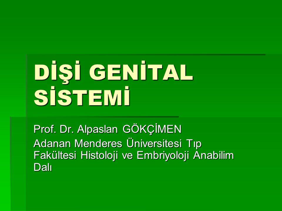 DİŞİ GENİTAL SİSTEMİ Prof. Dr. Alpaslan GÖKÇİMEN