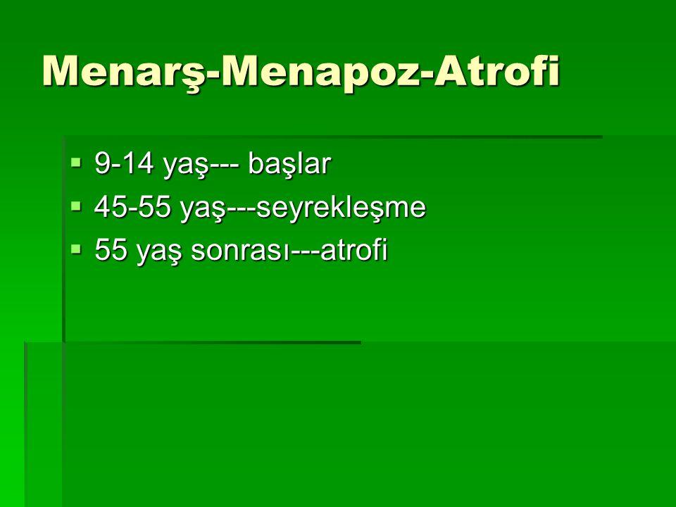 Menarş-Menapoz-Atrofi