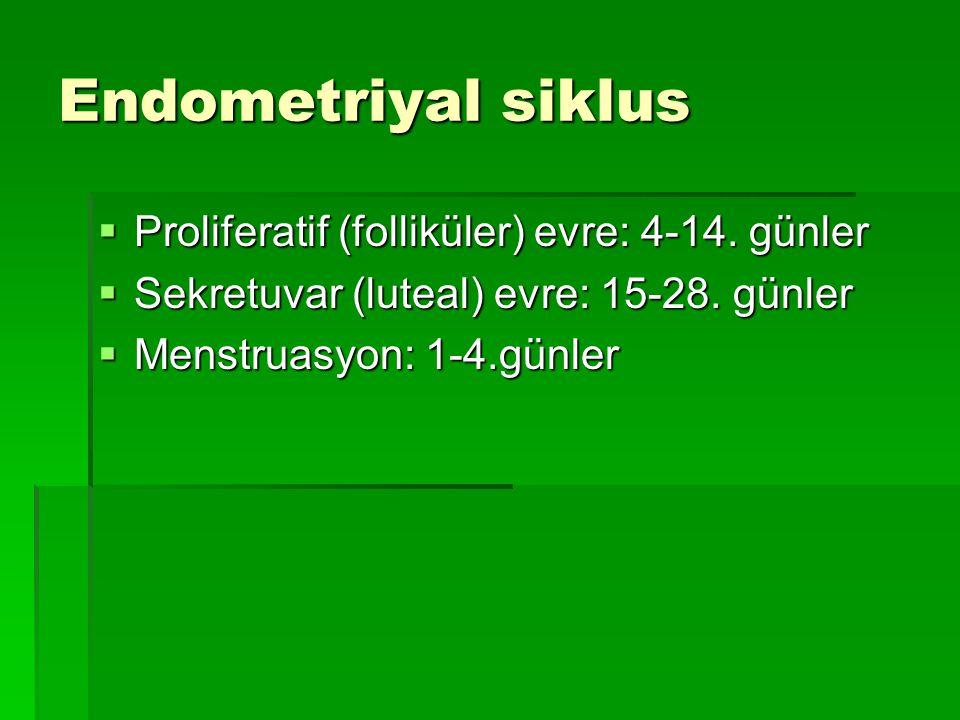 Endometriyal siklus Proliferatif (folliküler) evre: 4-14. günler