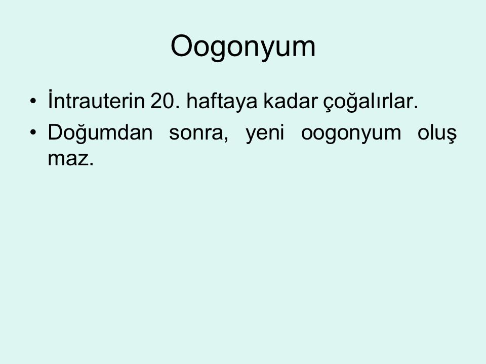 Oogonyum İntrauterin 20. haftaya kadar çoğalırlar.