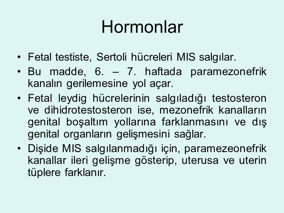 Hormonlar Fetal testiste, Sertoli hücreleri MIS salgılar.