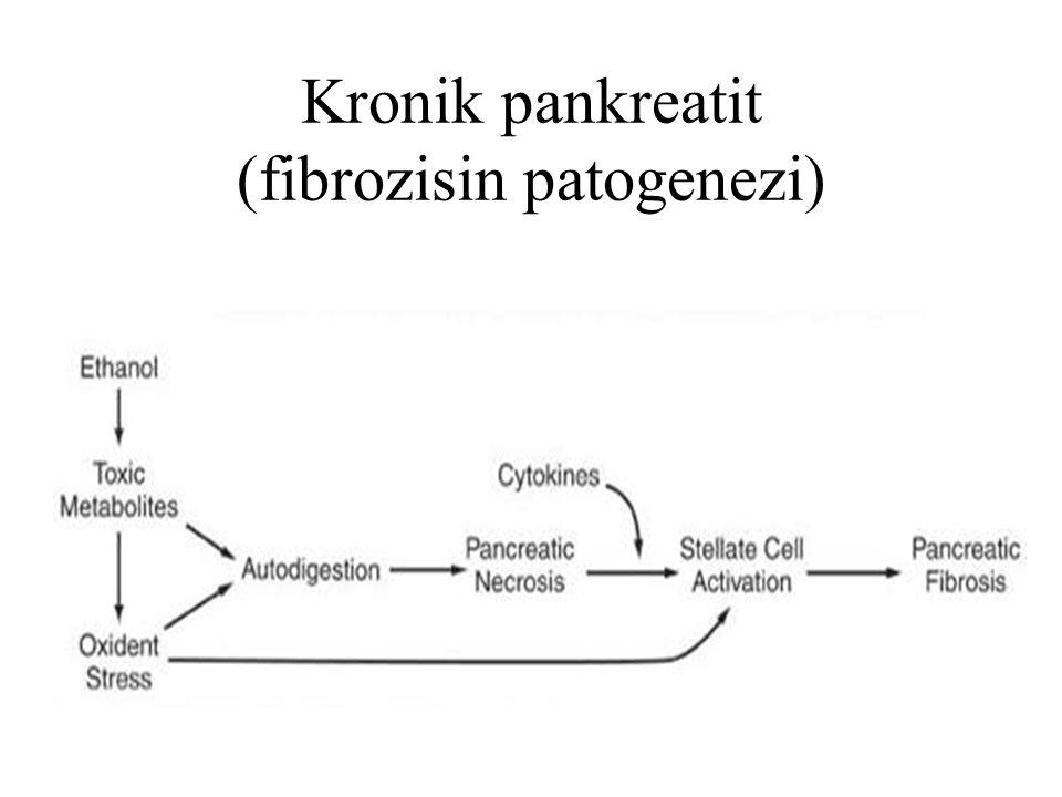 Kronik pankreatit (fibrozisin patogenezi)