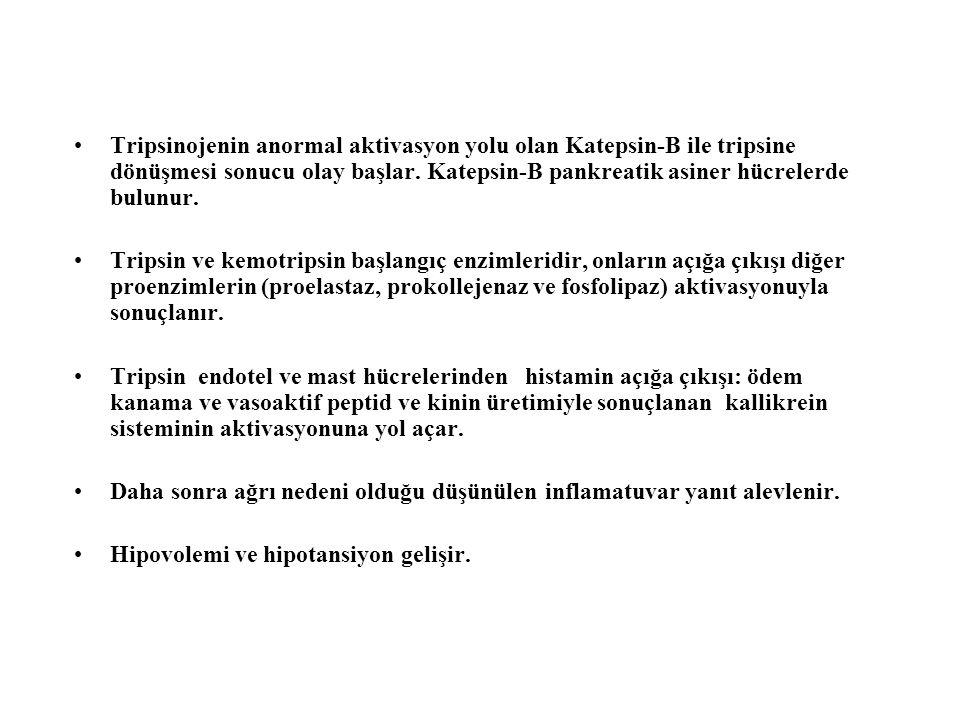 Tripsinojenin anormal aktivasyon yolu olan Katepsin-B ile tripsine dönüşmesi sonucu olay başlar. Katepsin-B pankreatik asiner hücrelerde bulunur.