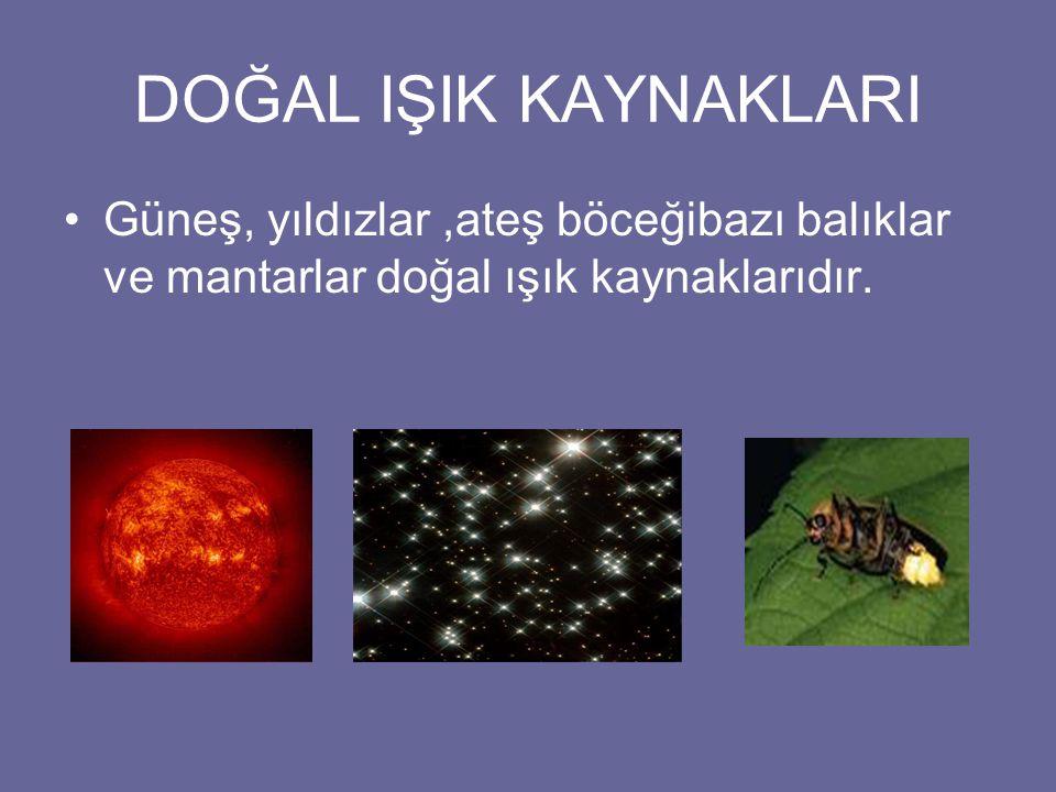 DOĞAL IŞIK KAYNAKLARI Güneş, yıldızlar ,ateş böceğibazı balıklar ve mantarlar doğal ışık kaynaklarıdır.