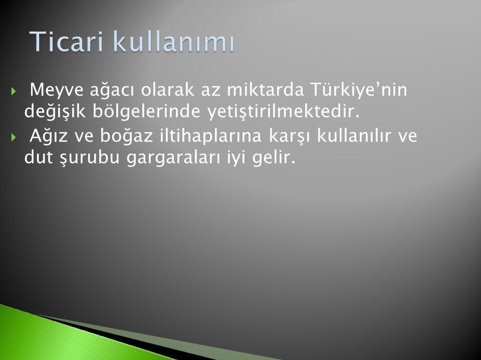 Ticari kullanımı Meyve ağacı olarak az miktarda Türkiye'nin değişik bölgelerinde yetiştirilmektedir.