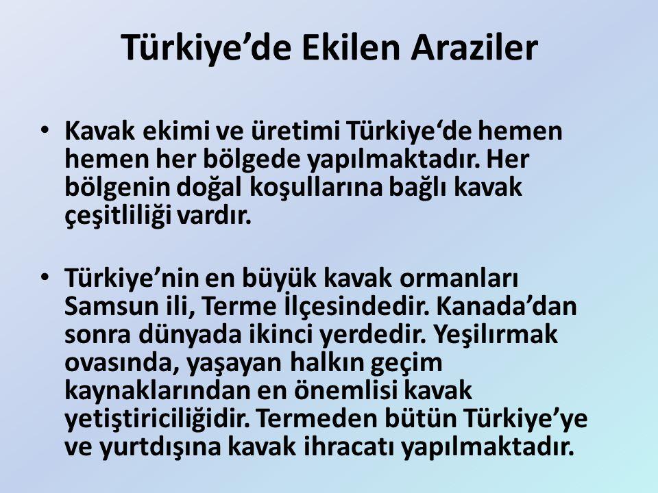 Türkiye'de Ekilen Araziler