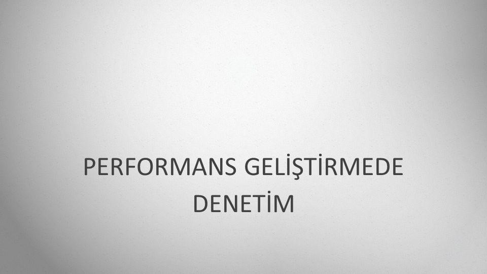 PERFORMANS GELİŞTİRMEDE DENETİM