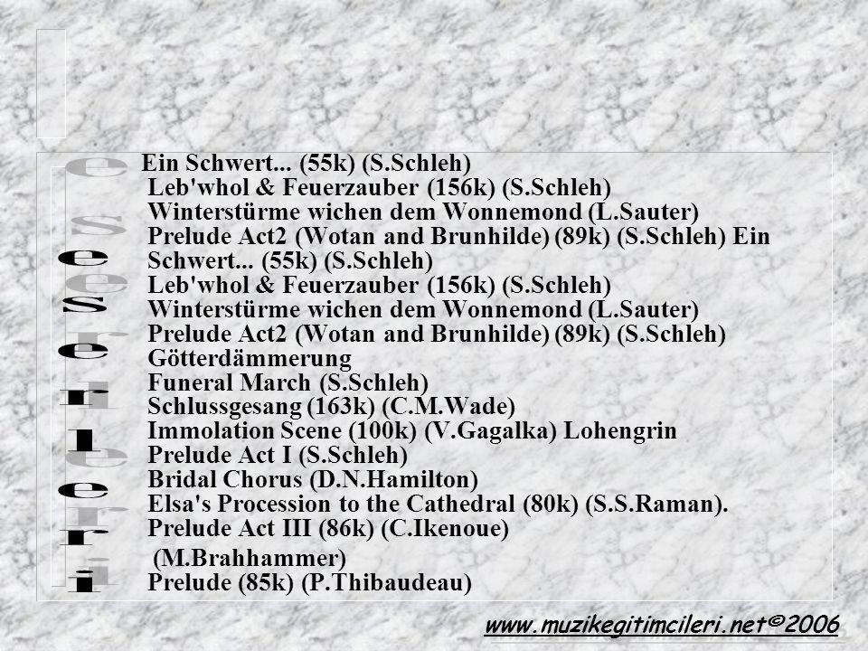 Ein Schwert. (55k) (S. Schleh) Leb whol & Feuerzauber (156k) (S