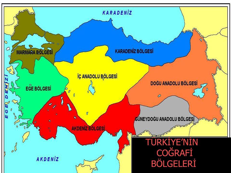 TÜRKİYE'NİN COĞRAFİ BÖLGELERİ