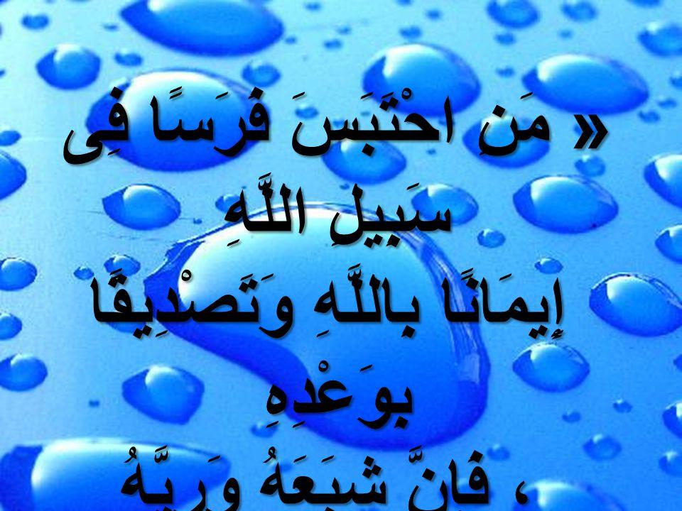 « مَنِ احْتَبَسَ فَرَسًا فِى سَبِيلِ اللَّهِ