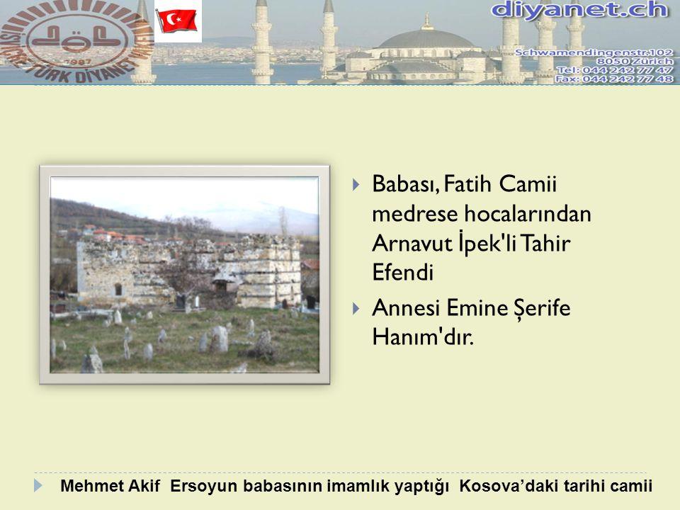 Babası, Fatih Camii medrese hocalarından Arnavut İpek li Tahir Efendi
