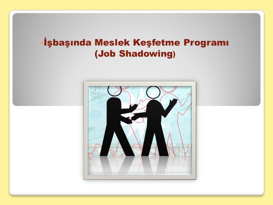 İşbaşında Meslek Keşfetme Programı (Job Shadowing)