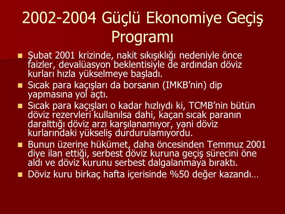 2002-2004 Güçlü Ekonomiye Geçiş Programı