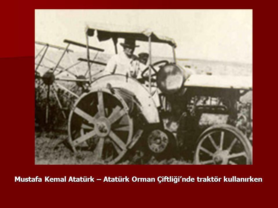 Mustafa Kemal Atatürk – Atatürk Orman Çiftliği'nde traktör kullanırken