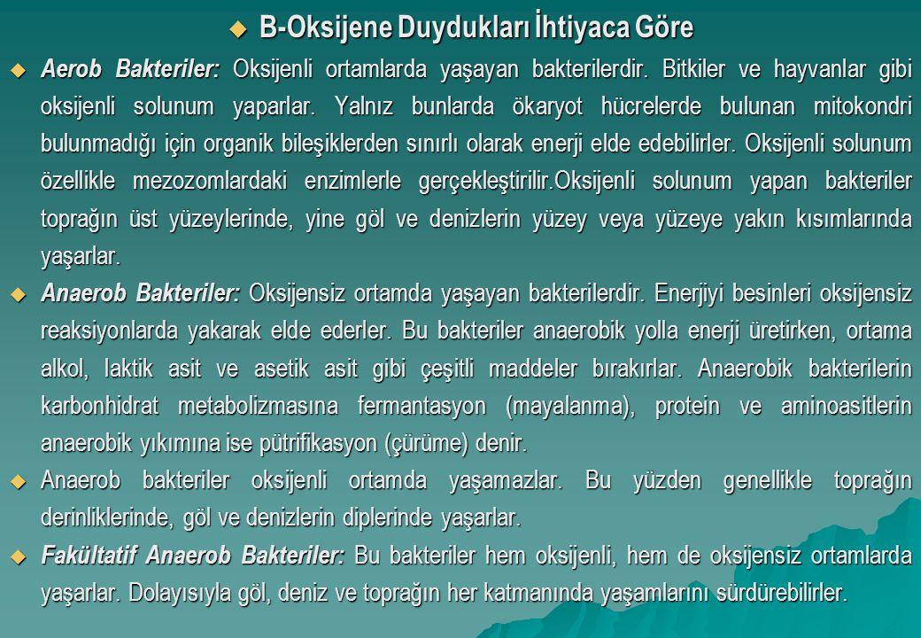 B-Oksijene Duydukları İhtiyaca Göre