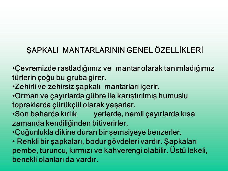 ŞAPKALI MANTARLARININ GENEL ÖZELLİKLERİ