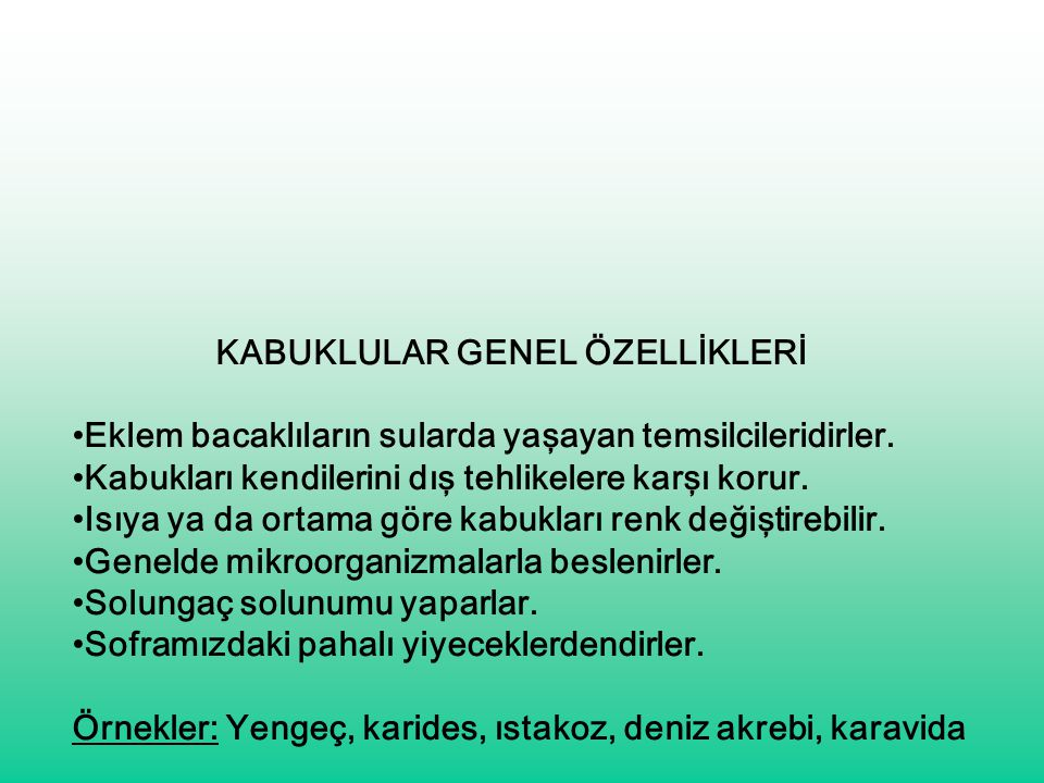 KABUKLULAR GENEL ÖZELLİKLERİ