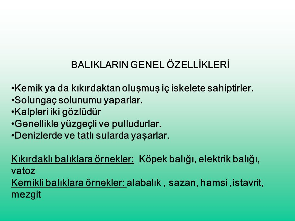 BALIKLARIN GENEL ÖZELLİKLERİ