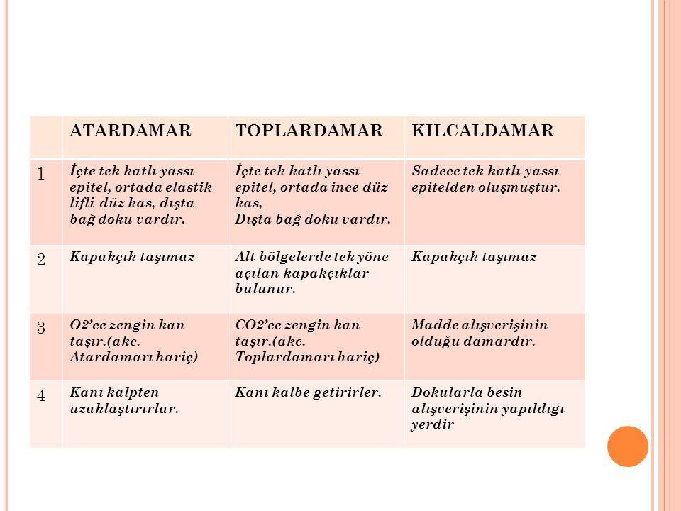 ATARDAMAR TOPLARDAMAR KILCALDAMAR 1 2 3 4