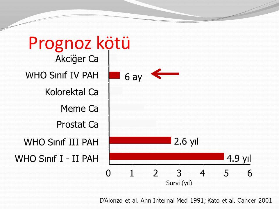 Prognoz kötü Akciğer Ca WHO Sınıf IV PAH 6 ay Kolorektal Ca Meme Ca