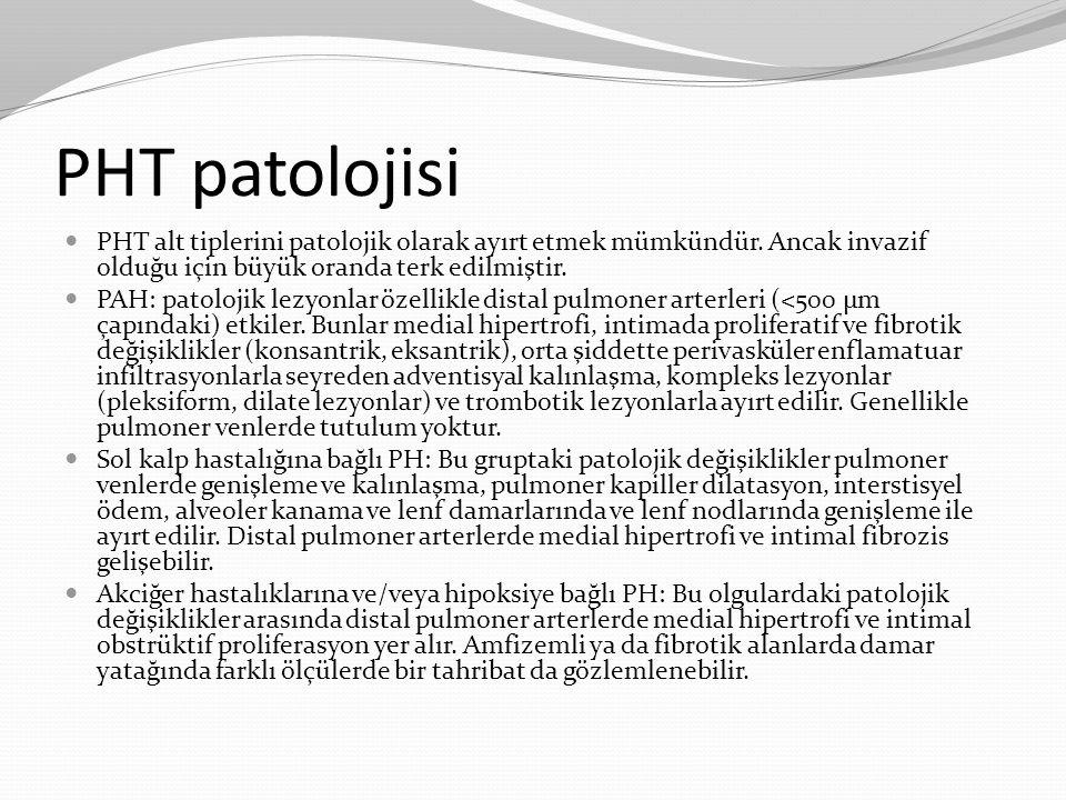 PHT patolojisi PHT alt tiplerini patolojik olarak ayırt etmek mümkündür. Ancak invazif olduğu için büyük oranda terk edilmiştir.