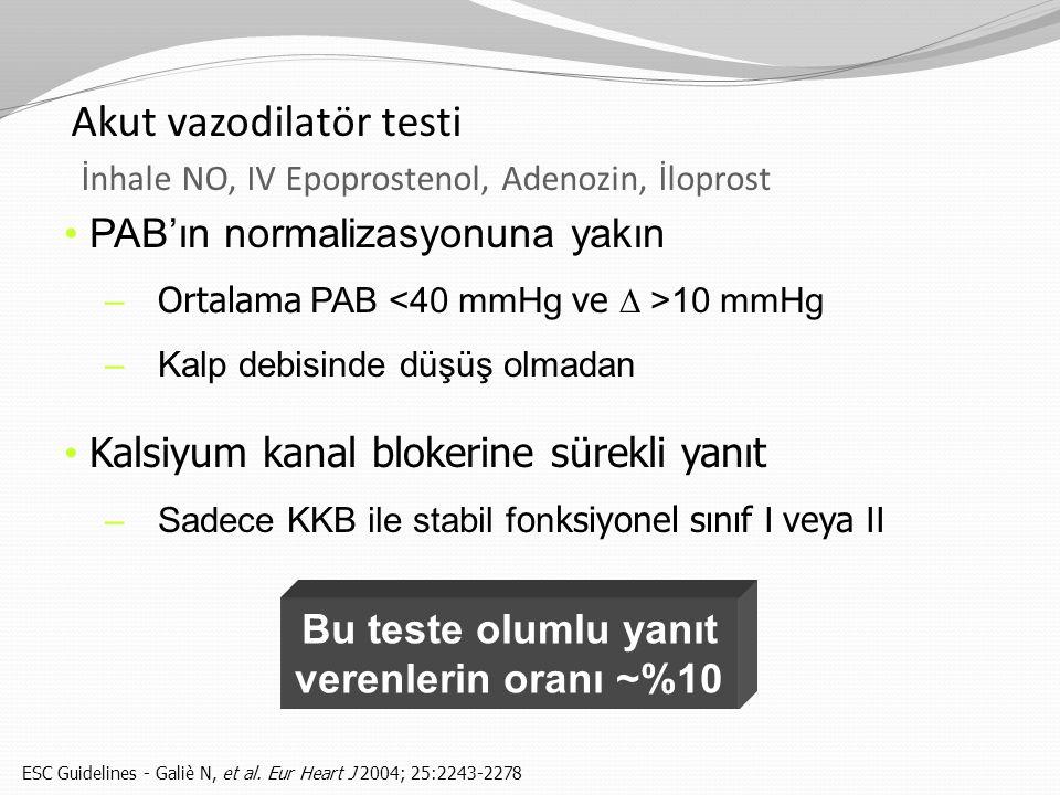 Akut vazodilatör testi İnhale NO, IV Epoprostenol, Adenozin, İloprost