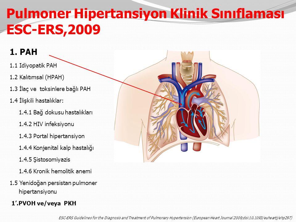 Pulmoner Hipertansiyon Klinik Sınıflaması ESC-ERS,2009