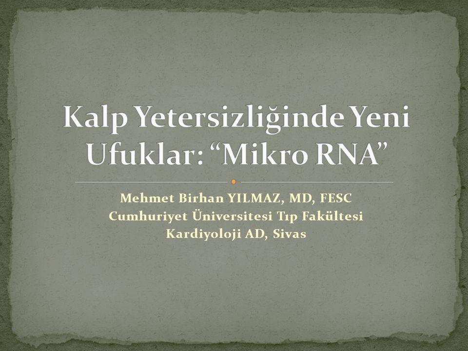 Kalp Yetersizliğinde Yeni Ufuklar: Mikro RNA