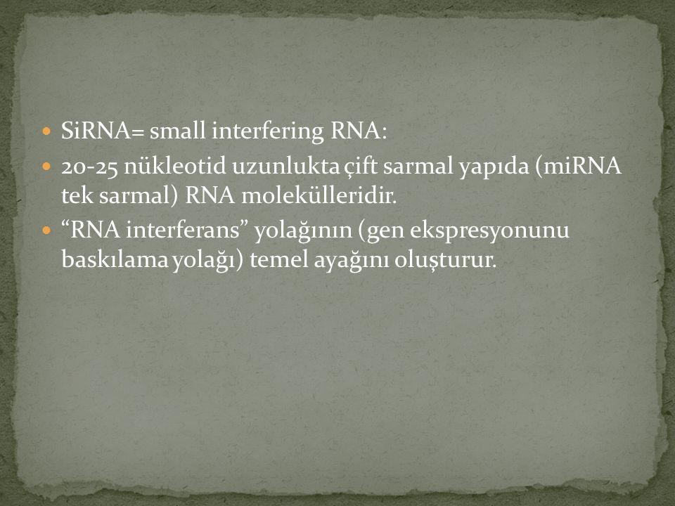 SiRNA= small interfering RNA: