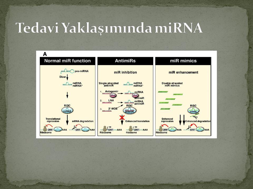 Tedavi Yaklaşımında miRNA