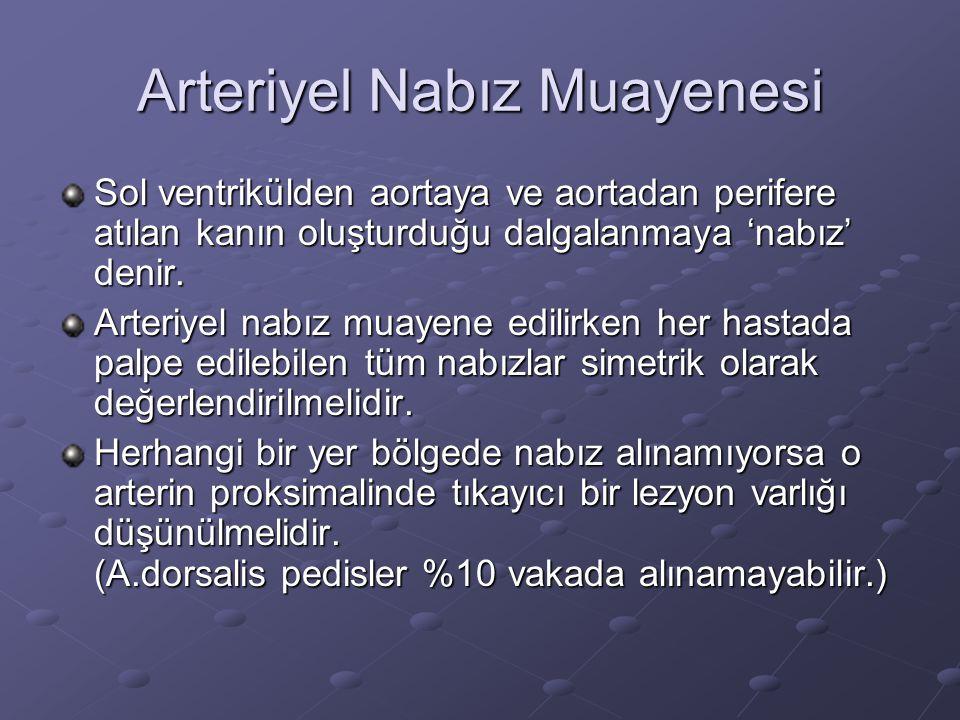 Arteriyel Nabız Muayenesi